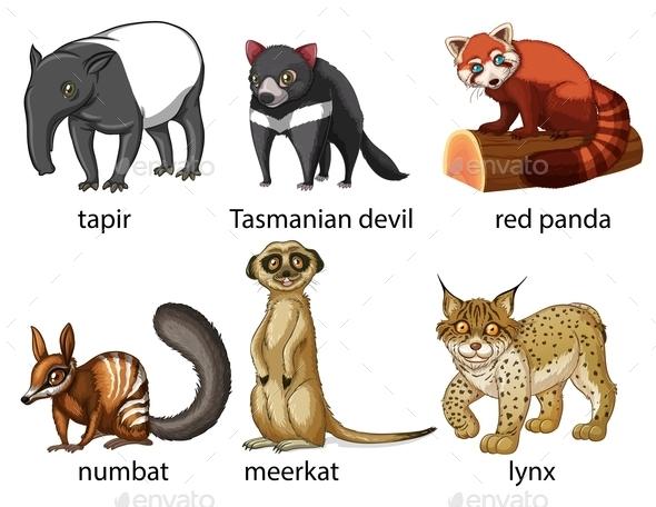 GraphicRiver Animals 10828112