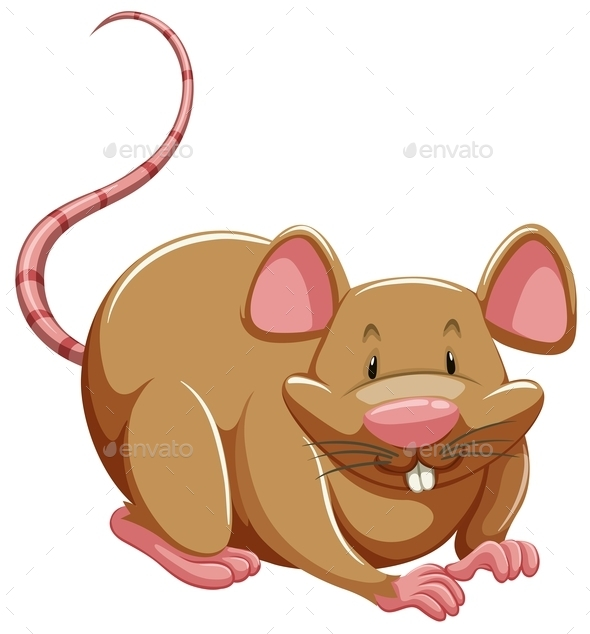 GraphicRiver Brown Rat 10833333