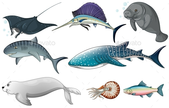 GraphicRiver Ocean Animals 10833573