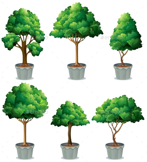 GraphicRiver Plants 10833924