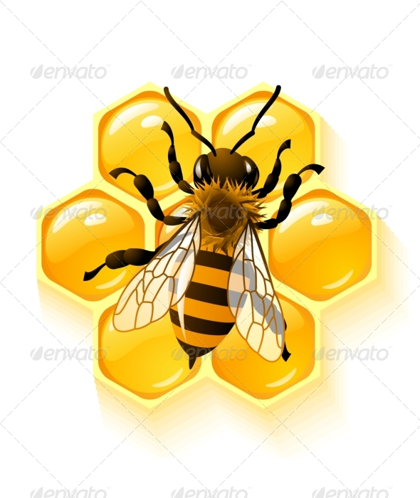 GraphicRiver Vector bee and honeycombs 134955