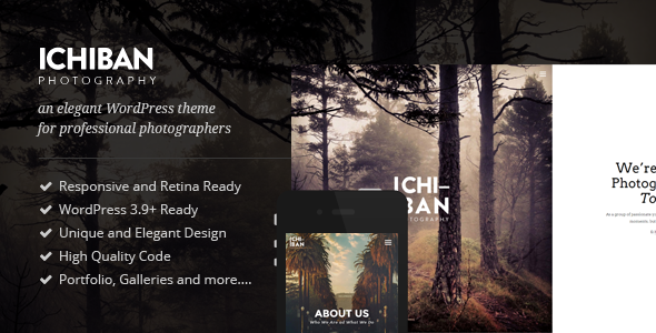 ThemeForest Ichiban A Theme for Photographers 10839660