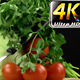 Vegetables All Together 13 - VideoHive Item for Sale