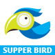 Supper Bird Logo Template - GraphicRiver Item for Sale