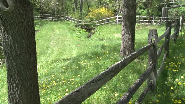 VideoHive Wooden Fence In A Meadow 2 Of 2 10846348