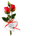 Roses with Happy Mother's Day gift card.  - PhotoDune Item for Sale