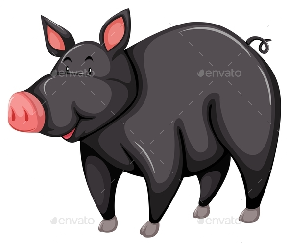 GraphicRiver Gray Pig 10848975
