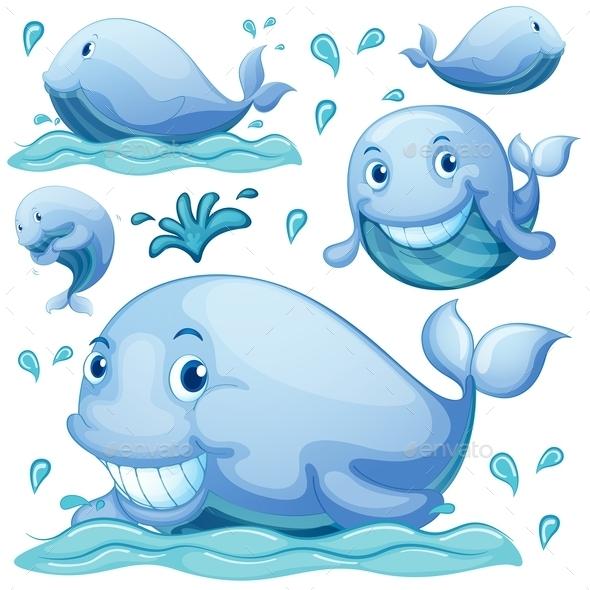GraphicRiver Whale 10849025