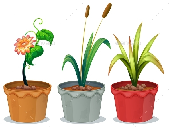 GraphicRiver Potted Plants 10849719