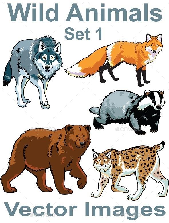 GraphicRiver Wild Animals Vector Set 10852478