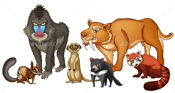 GraphicRiver Animals 10852772