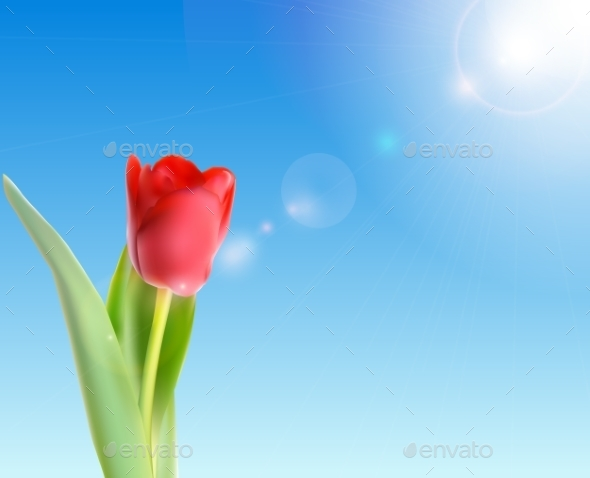 GraphicRiver Tulip Against Shiny Sky 10853163