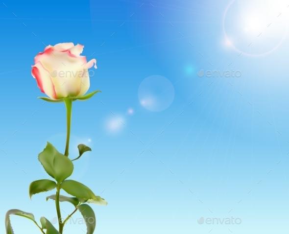 GraphicRiver Rose Against Shiny Sky 10853167