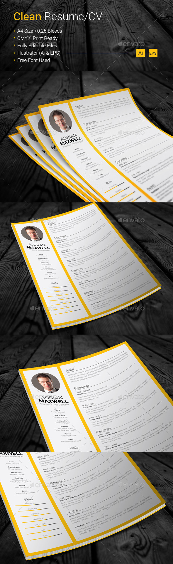 GraphicRiver Clean Resume CV 10854883