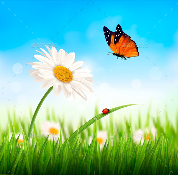 GraphicRiver Nature Spring Daisy Flower with Ladybug 10861222