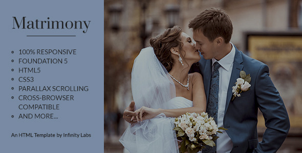 ThemeForest Matrimony 10790246