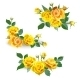 Set of Yellow Roses. - GraphicRiver Item for Sale