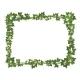 Ivy Frame  - GraphicRiver Item for Sale