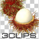 Fresh Rambutan - VideoHive Item for Sale