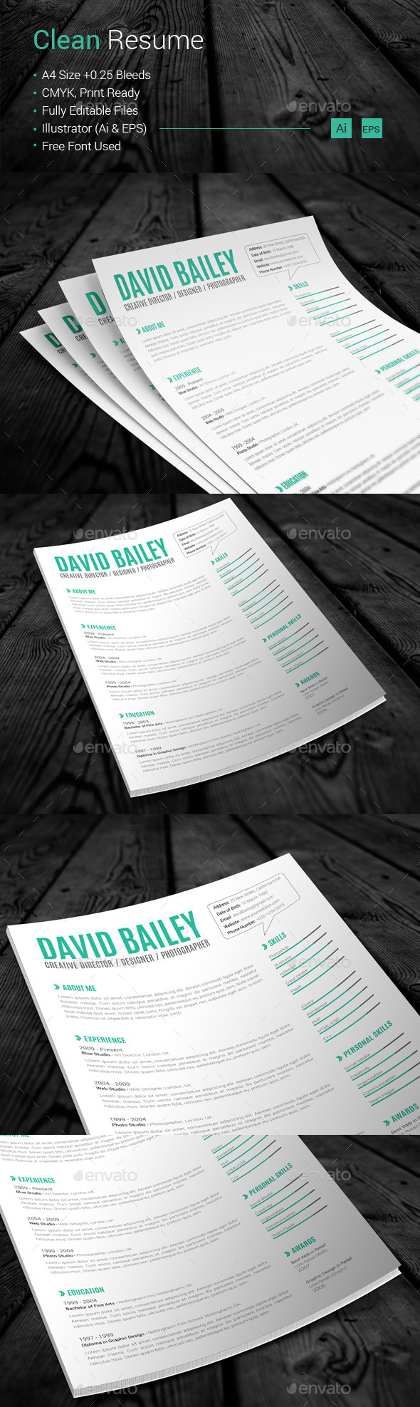 GraphicRiver Clean Resume 10868730