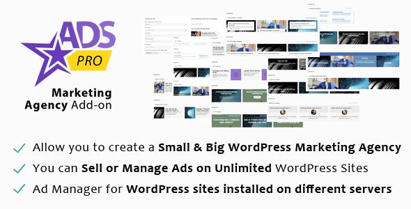 CodeCanyon ADS PRO WordPress Marketing Agency Add-on 10665901
