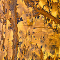 Abstract mineral texture - PhotoDune Item for Sale