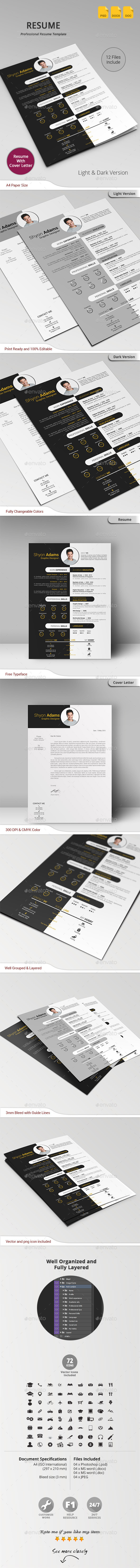 GraphicRiver Resume 10871875