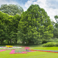 summer park with beautiful flowerbeds - PhotoDune Item for Sale