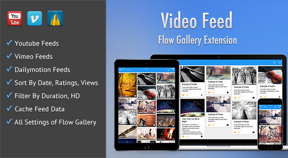 CodeCanyon Video Feed Flow Gallery Exension 10872403