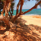 Panorama of The Coast - VideoHive Item for Sale