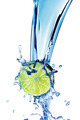 Lime with water splash - PhotoDune Item for Sale