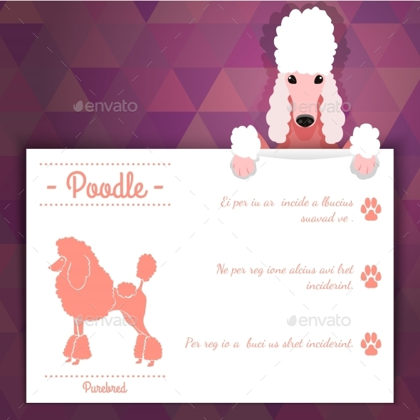 GraphicRiver Poodle Dog Banner 10874005