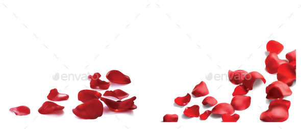 GraphicRiver Rose Petals 10874463