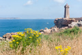 Lighthouse at rocky coast of Brittany with beautiful blooming yellow flower - PhotoDune Item for Sale