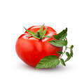 tomato with green leaf isolated on white - PhotoDune Item for Sale