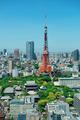 Tokyo Skyline - PhotoDune Item for Sale