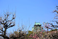 Osaka Castle and plum blossoms - PhotoDune Item for Sale