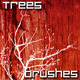 Trees Brushes Photoshop Collection