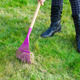 Cleaning green lawn by rake - PhotoDune Item for Sale