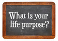 What is your life purpose ? - PhotoDune Item for Sale