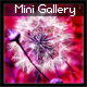 XML Mini Gallery (flying pieces effect)