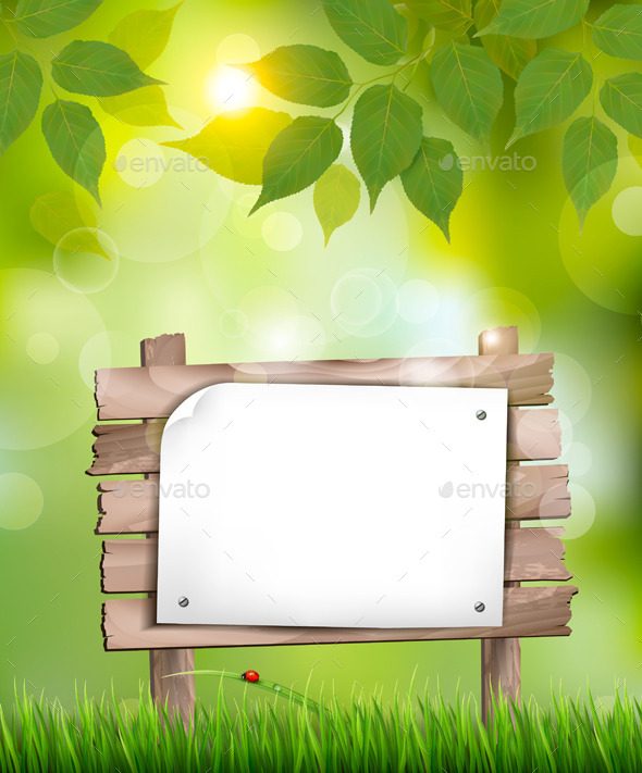GraphicRiver Natural Background with Leaves and Wooden Sign 10861160