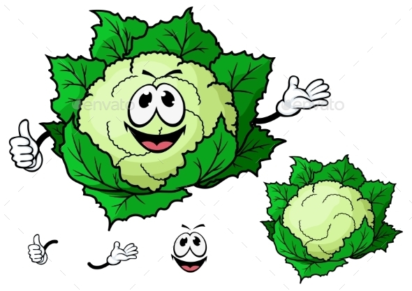 GraphicRiver Cauliflower Cartoon 10898051