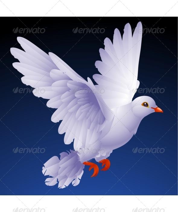 GraphicRiver Vector white dove 135414