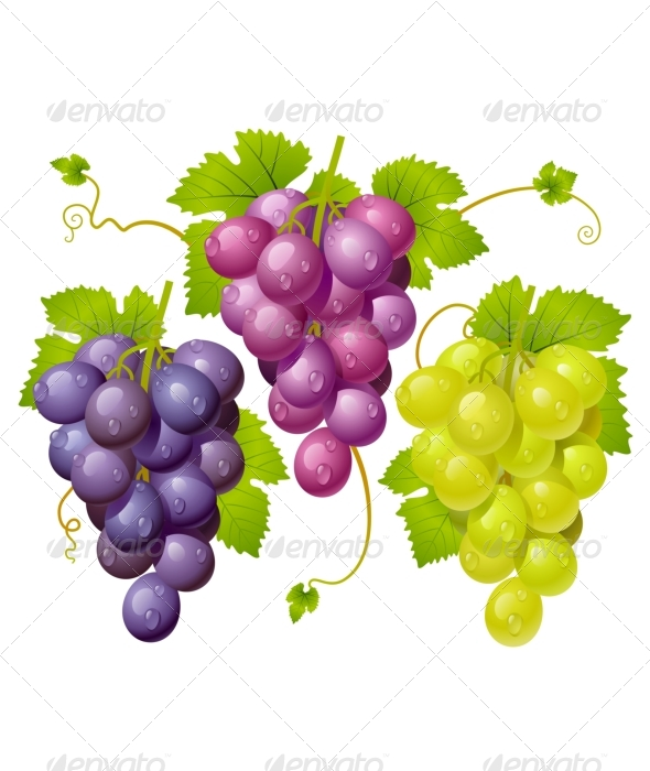GraphicRiver Three cluster of grapes 135423
