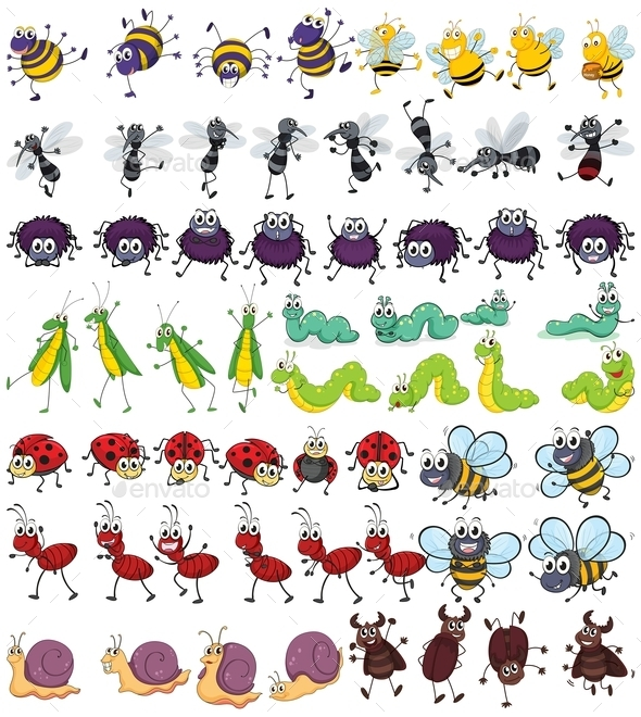 GraphicRiver Insects 10899008