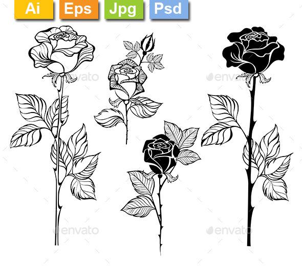 GraphicRiver Set of Contour Roses 10899035