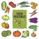 Vegetable Sketch Set - GraphicRiver Item for Sale