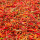 Dried Red Chilli Background - PhotoDune Item for Sale