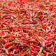 Dried Red Chilli  - PhotoDune Item for Sale